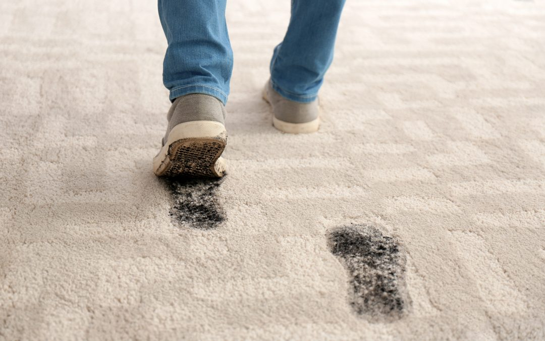 Investing in Industrial Carpet Cleaning Equipment Before the Holiday Rush